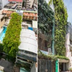 Saigon house has plants for walls, roof – VnExpress International