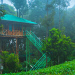 Munnar tourism awaits to welcome you with open arms