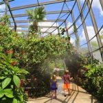 Top Things to Do in Bangalore's Bannerghatta Biological Park